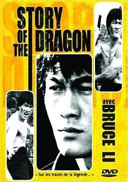 story-of-the-dragon_219db2ca52d0f2696ef101b991db7cf5