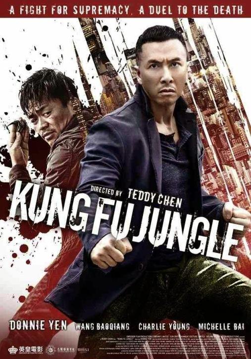 kung-fu-jungle-2014-720p-brrip